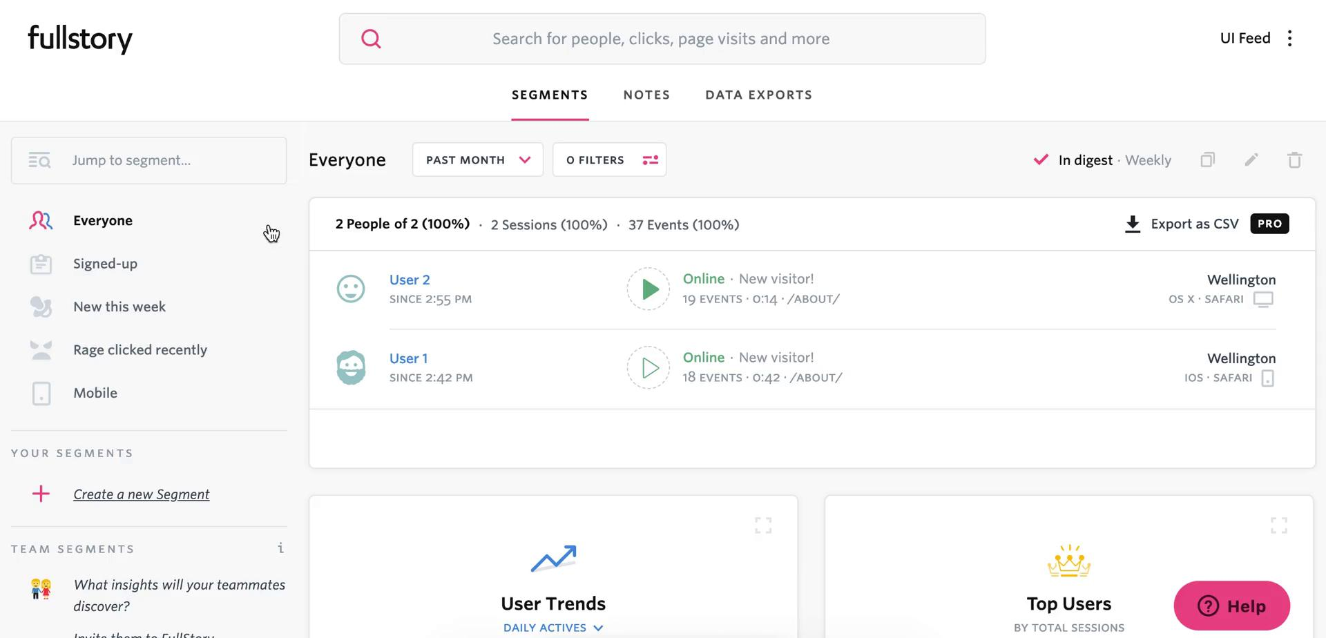 Screenshot of Dashboard during Segmenting on Fullstory user flow